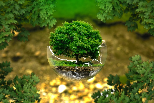 ekologiczne rozwiązania